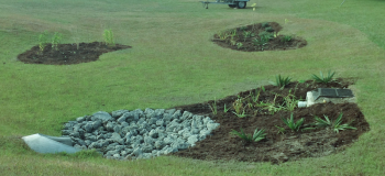 Existing turf areas within the Town of Wrightsville Beach are re-purposed into garden areas that feature native plantings, and capture polluted stormwater before it reaches the adjacent recreational waters.