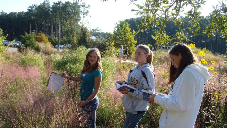 8th grade Manteo MS rain garden