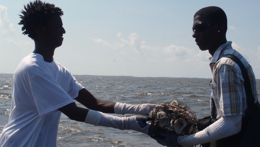Volunteers with the Oyster Restoration project