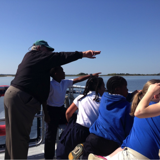 That magical moment when Captain Tom spotted dolphins in the estuary!