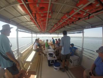 Marsh cruise 2