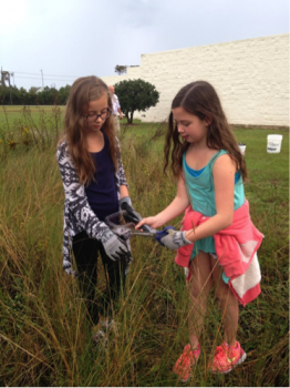 Sixth graders at First Flight Middle School help to maintain their school rain garden this fall.