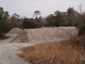 The oyster shell stockpile site at Morris Landing