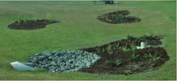 Existing turf areas within the Town of Wrightsville Beach are repurposed into garden areas that feature native plantings, and capture polluted stormwater before it reaches the adjacent recreational waters.