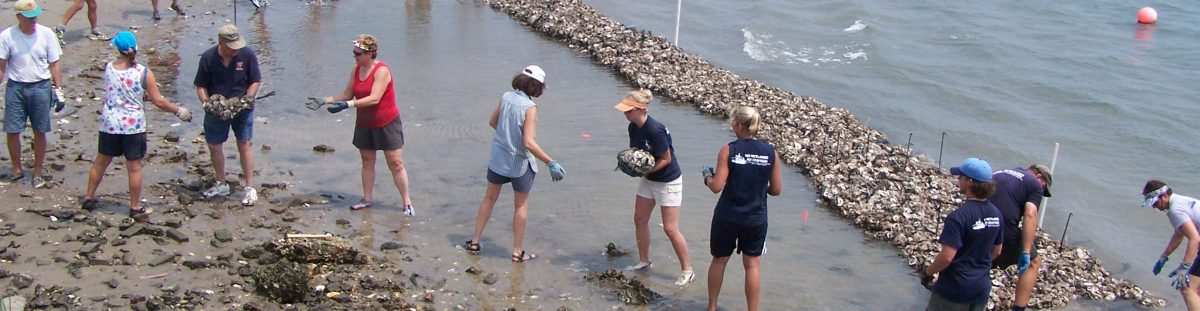 Restore 50 million oysters in north carolina north for Renew nc fishing license