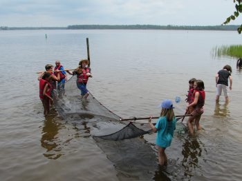 The campers especially enjoyed using the seine net to see what they could catch