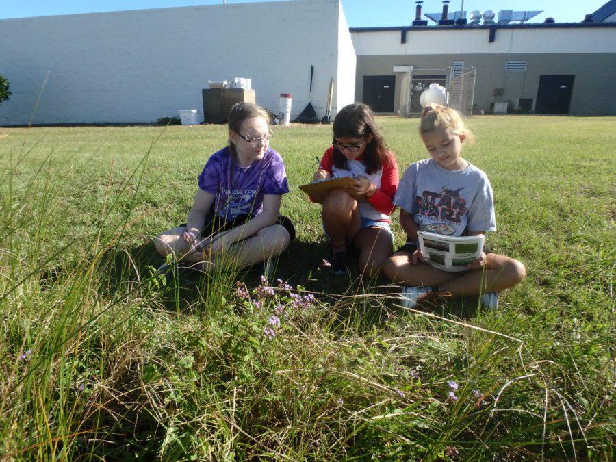 Students discuss their rain garden species. The vegetation in rain gardens allows water to soak into the ground. Photo: Sara Hallas