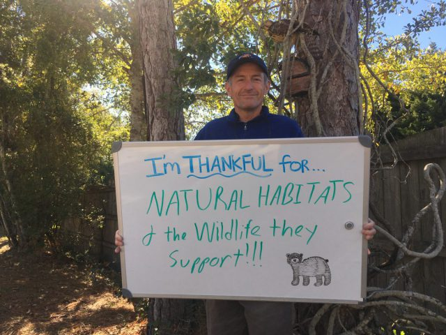 "Sam Bland, coastal specialist, is thankful for ""natural habitats and the wildlife they support."""