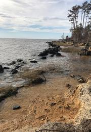 Oriental Shoreline Prior to Construnctions