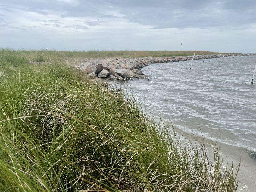 Atlantic White's Point Living Shoreline