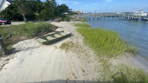 Rocky Mount Ave. Living Shoreline