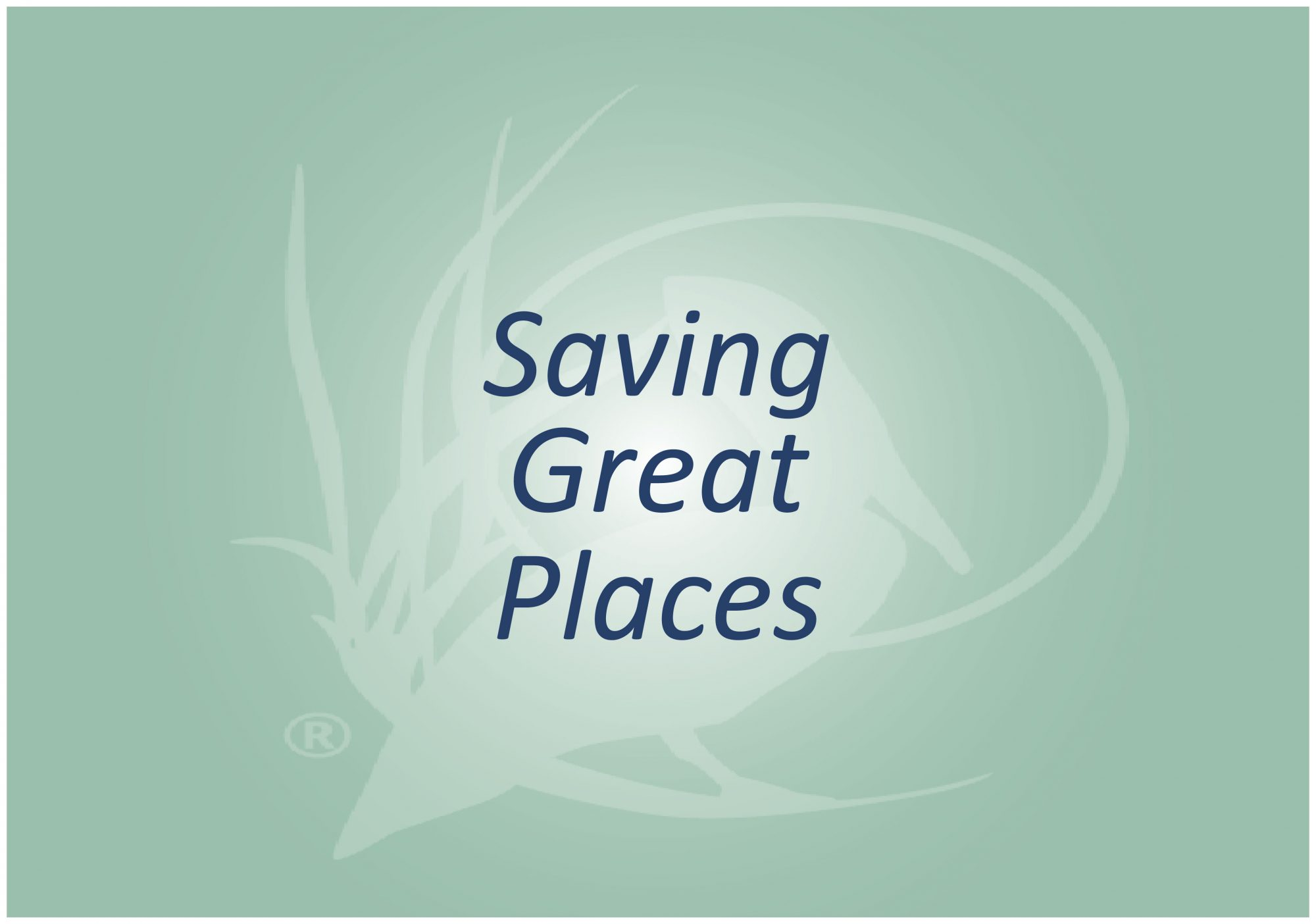 Saving Great Places