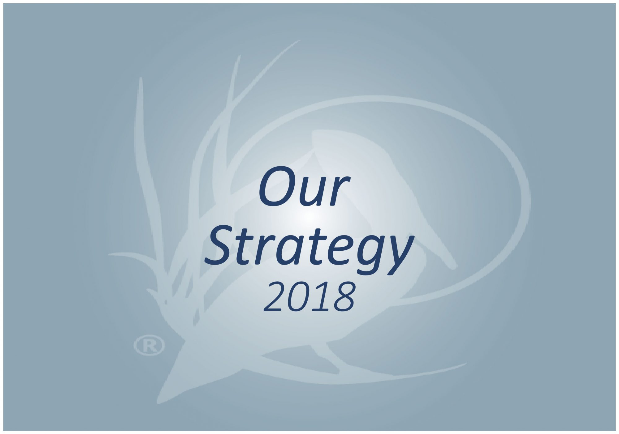 Our Strategy 2018