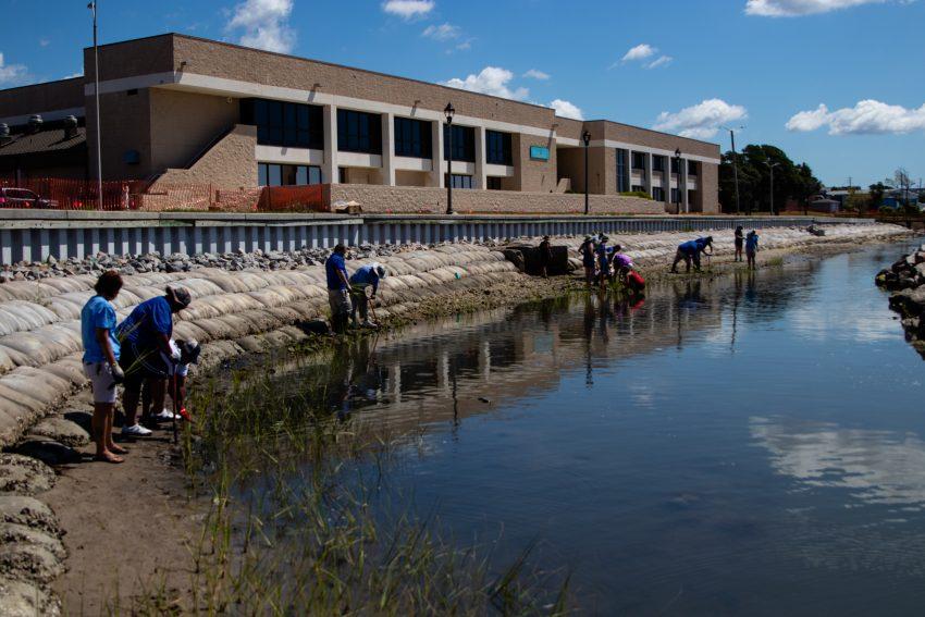 The living shoreline alongside Carteret Community College