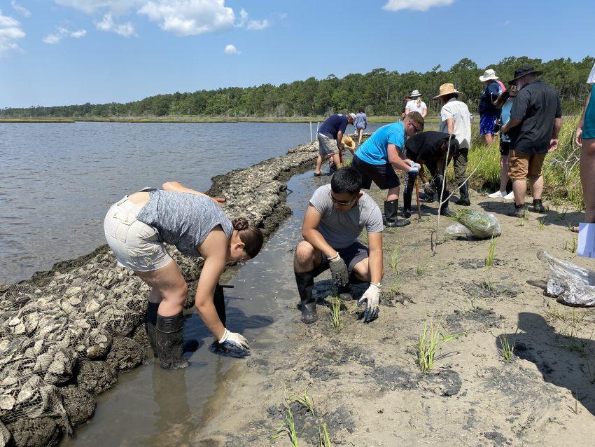 Living Shoreline Marine Construction Training