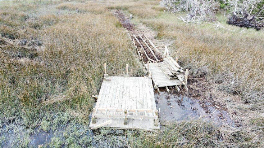 Marine Debris in Brunswick County